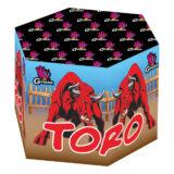 Fuente Toro